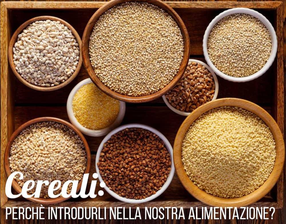 cereali-perche-introdurli-nella-nostra-alimentazione